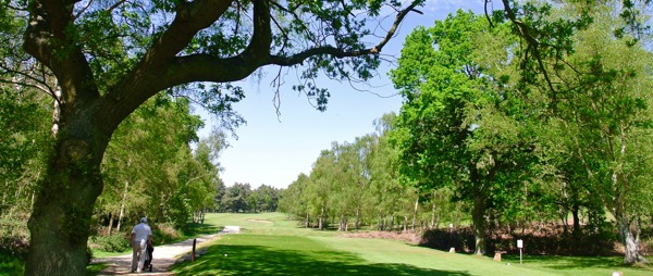 Kings Lynn Golf Club Fairway
